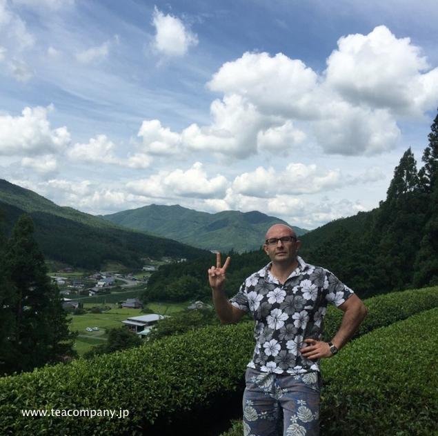 зелёный японский чай сиракавача